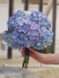 Blue hydrangea wedding flowers