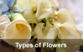 types of wedding flowers